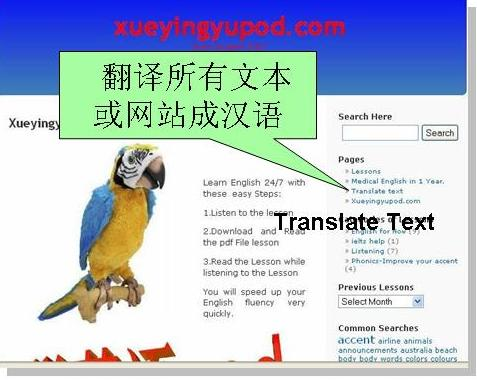 "Translate english to chinese by clicking and opening this page ""Translate Text"""